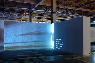 15th Lyon Biennial