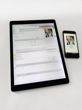 """Monica de Cardenas, Raccolte opere  La sezione delle """"raccolte"""" permette di creare gruppi di lavori utilizzando criteri diversi: per creare liste per autore, selezioni per esposizioni ed eventi, o anche per creare offerte personalizzate per Clienti. Come tutto il gestionale anche questa sezione è utilizzabile in modalità touch su tutti i dispositivi iOS."""