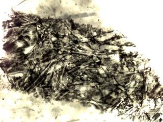 MICRO MACRO, Frammento di un'opera di Elisa Bollazzi al microscopio, Photo © Microcollection