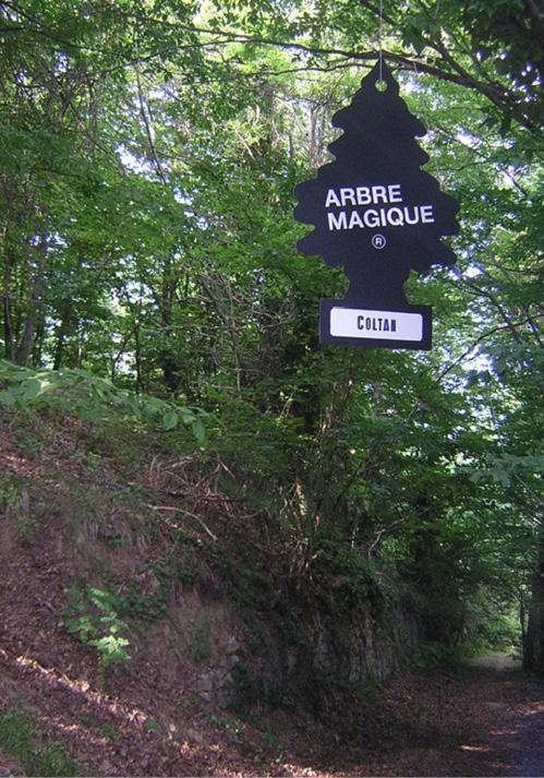 Arbre Magique 'Coltan'