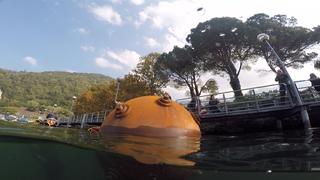 Protecziun da la patria, Ispezione subacquea del peso morto, Photo © Stefano Dondi