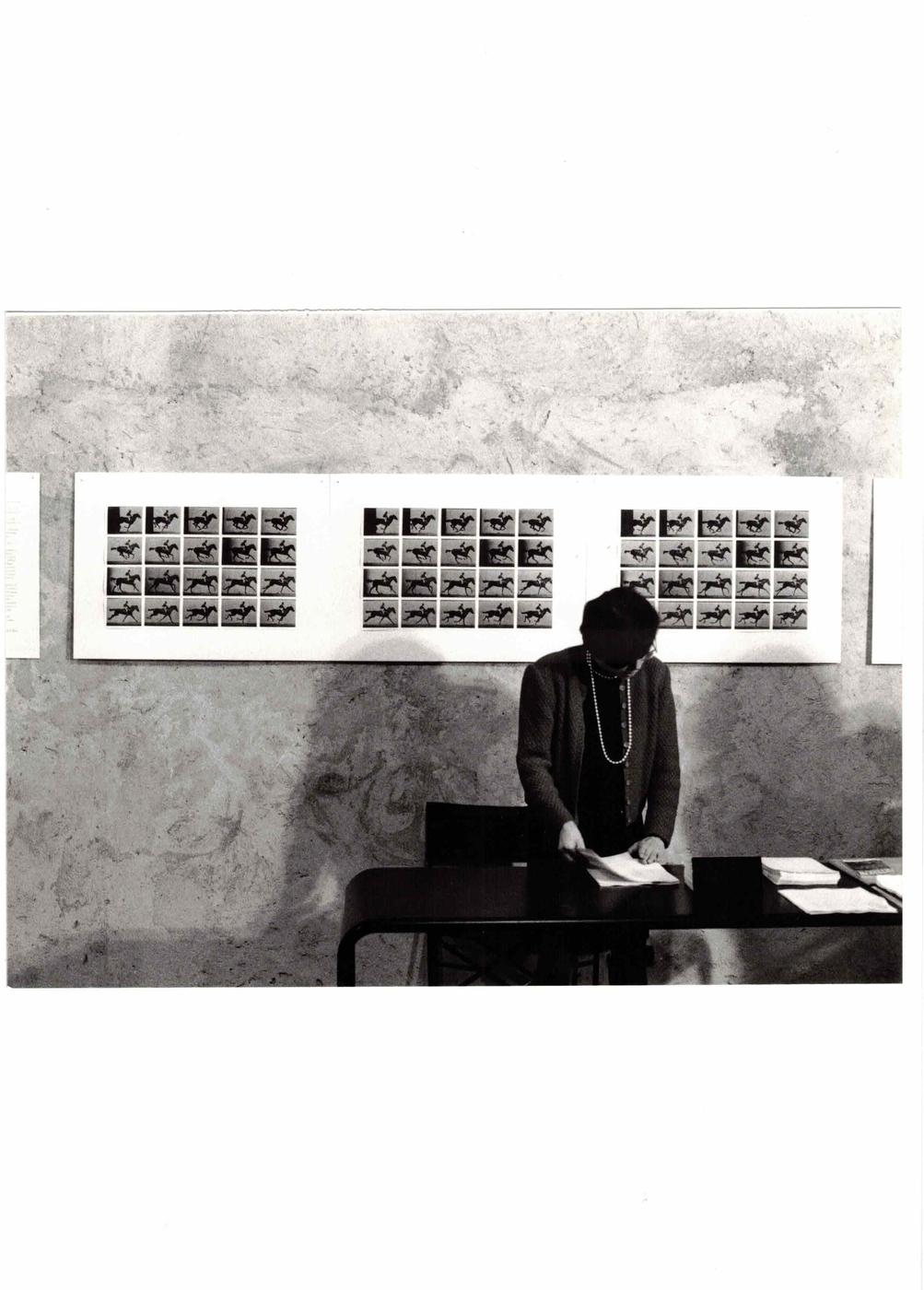 Paola Di Bello, Il circolo virtuoso, Paola Di Bello distribuisce le polaroid