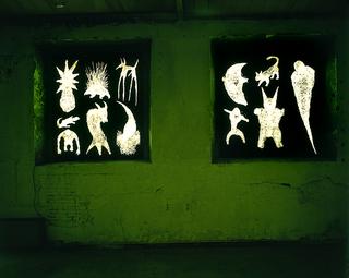 Paolo Canevari, Disegno, Tempera su vetro, particolare di due finestre, ciascuna circa 3x3 metri