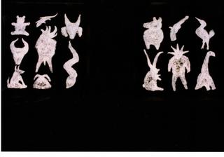 Paolo Canevari, Disegno, Tempera su vetro, altre due finestre