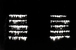 Gianluca Codeghini, Conservare fuori dalla portata, Gli elmetti luminosi. Foto di Davide Bonasia