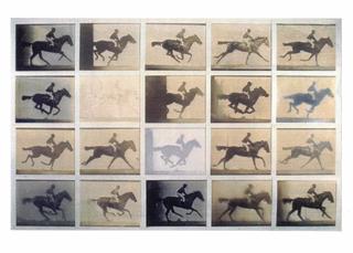 Paola Di Bello, Il circolo virtuoso, Le polaroid restituite dopo qualche mese: ognuna aveva avuto una esposizione diversa a seconda di come era stata conservata