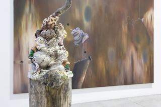 Enej Gala, Prefabrick - Walking with Art Prize 2015, Ascent of prevention, 2015 legno, poliuretao espanso, stoffe, pelo artificiale, ferro, fili, insetti, colori ad olio, (dettaglio) Foto di Giulia Alli
