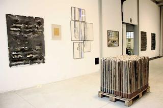 Officine dell'Arte - dai workshop di Stefano Arienti e Italo Zuffi, Veduta dell'allestimento