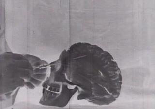 Cinemino, Alberto Grifi, Il Preteso Corpo