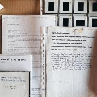 The Living Archive, Marcello Maloberti