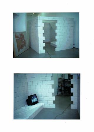 Sabrina Sabato, Contagio, Camera scatole di cartone, video.