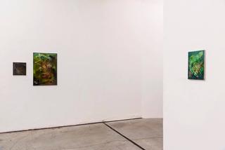 VIR Viafarini-in-residence, Open Studio, Vera Portatadino, da sx: Un tempo c'era l'acqua su marte; 2017; We forgot all the names, 2017; Echoes, 2018, olio su tela. Foto di Valerio Torrisi.