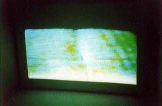 Video Invitational - Video in tutti i sensi: Tobias Collier, Tobias Collier Toast/Tranquility, 2001 still
