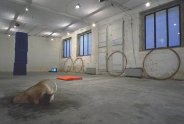 Nada Cingolani, Diego Perrone - Fenis, Veduta della mostra