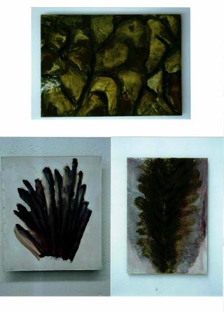 Sabrina Sabato, Contagio, Biopsie resine e pigmenti.