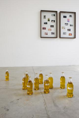 Loredana Di Lillo, Animal, Cocacola Vision, 2011 10 bottiglie in vetro soffiato, olio d'oliva, smalto 23 x 6,5 cm cad.