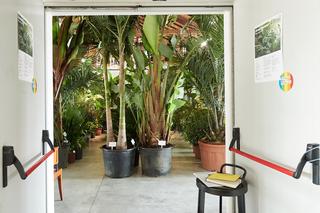 Green Guests eco-dentro, Veduta dell'allestimento. Foto di Leo Torri.