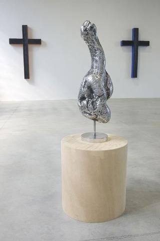 Valentin Carron, Luisant de sueur et de briantine, Villa Flora, 2008, alluminio, legno. Foto di Zeno Zotti.