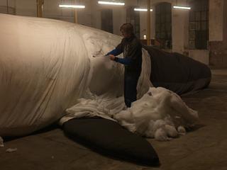 Claudia Losi, Les Funerailles de la Baleine, Biella, 2010