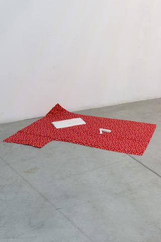 Viafarini Open Studio, Daniela Ardiri