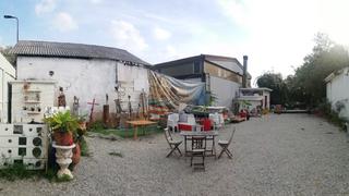 Intercultura - Capitolo 22 Il Giardino delle Meraviglie, Lavori in corso per la sistemazione del giardino, 2020