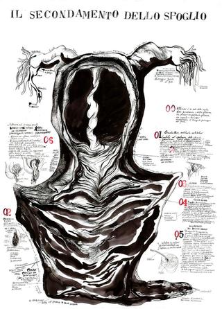 Arimortis, SISSI, Analisi del lembo scucito, 2011, disegno a china su carta, 100 x 70 cm
