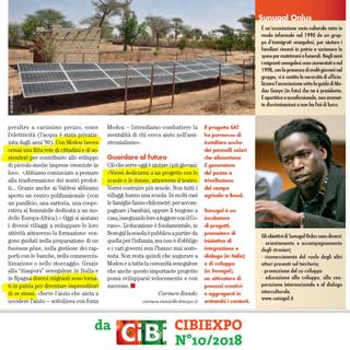 Intercultura - Capitolo 11 Acqua e fuoco al villaggio, Progetto SAT per pannelli solari che alimentano il pozzo del campo agricolo al villaggio di Beude Dieng
