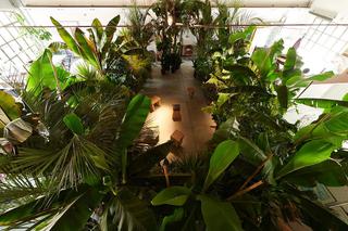 Green Guests eco-dentro, Foto di Leo Torri.