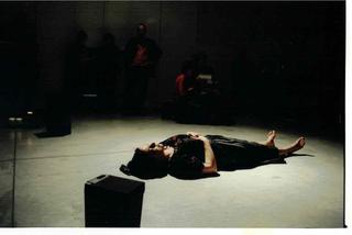Maja Bajevic, Avanti Popolo, Veduta della performance