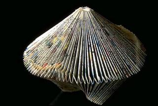 Stefano Arienti, Turbina, 1987 (Turbine) Folded comic-strip 25 cm di altezza circa