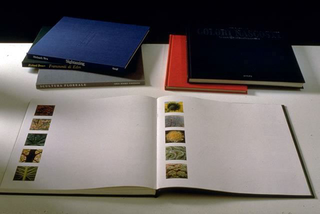 Stefano Arienti, Senza titolo, 1991 (Untitled) 6 books with erased text dimensioni variabili Studio Guenzani, Milano Foto:Roberto Marossi