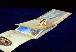 Stefano Arienti, The flight of the pterosaurus, 1993 Pop-up book with erased text dimensioni variabili (20 cm di altezza)