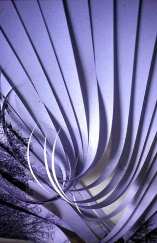 Stefano Arienti, Senza titolo, 1998 Poster collages dimensioni variabili