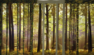Stefano Arienti, Verde Mimetico, 2004 (Green camouflage) Assemblage of posters and cloth dimensioni variabili Courtesy:Studio Guenzani, Milano