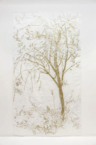 Stefano Arienti, Ulivo, 2009 Ink on plastic dust cover canvas dimensioni variabili Studio Guenzani, Milano Courtesy:Studio Guenzani, Milano