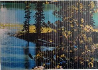 Stefano Arienti, Canada, 2010 48 X 137 cm ciascuna delle 4 parti Courtesy:Galleria Massimo Minini, Brescia