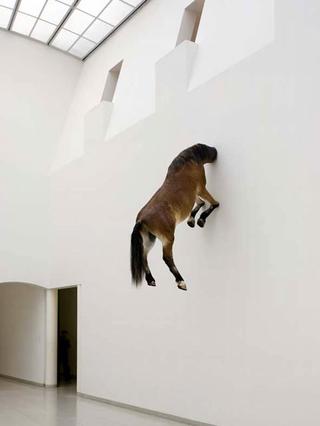 Maurizio Cattelan, Senza titolo, 2007 Taxidermy 300 x 168,5 x 80 cm Courtesy:Marian Goodman Gallery, New York