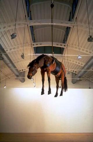 Maurizio Cattelan, La ballata di Trotskij, 1996 (Trotski's ballad) Stuffed horse dimensioni reali Galleria Massimo De Carlo, Milano