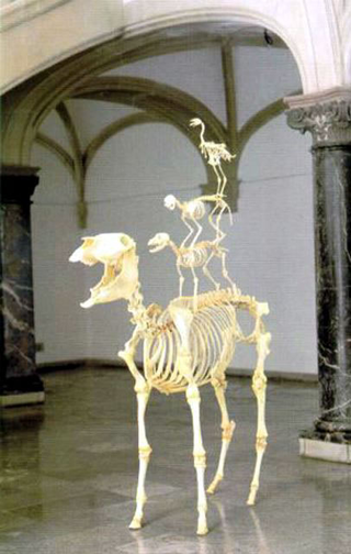 Maurizio Cattelan, Love lasts forever - L'amore dura per sempre, 1997 Skeletons of donkey, dog, cat, rooster 210 x 120 x 60 cm - Skulptur. Projekte , Münster Foto di Roman Mensing