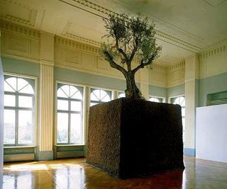 Maurizio Cattelan, Senza titolo, 1998 (Untitled) Earth, olive tree 8 x 4 x 4 m Manifesta 2, Casino Luxembourg, Luxembourg; Collezione del Castello di Rivoli - Museo d'Arte Contemporanea, Rivoli (TO)