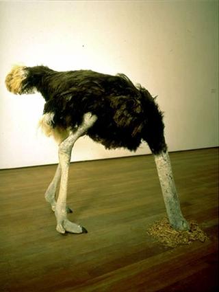 Maurizio Cattelan, Senza titolo, 1997 (Untitled) Stuffed ostrich dimensioni reali