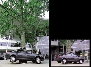 Maurizio Cattelan, Senza titolo, 2000 (Untitled) Tree, car dimensioni reali Expo 2000, Hannover Foto di Roman Mensig