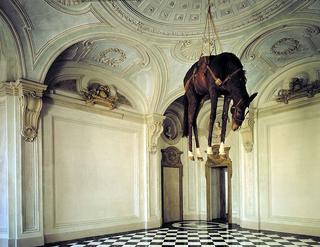 Maurizio Cattelan, Novecento, 1996 Stuffed horse dimensioni reali Castello di Rivoli - Museo d'Arte Contemporanea, Rivoli (TO) Foto di Paolo Pellion di Persano