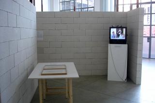 Curatology©, Lo spazio 6: due collezionisti, Stefania ed Emilio Giorgi, scelgono un'opera della loro collezione in conversazione con Francesco Garutti