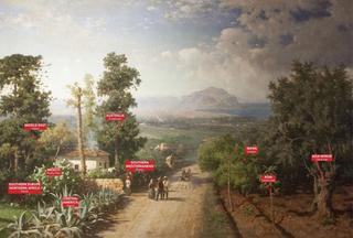 Studio Visit Italia per Manifesta12 Palermo, Manifesta12. Veduta di Palermo, Francesco Lojacono, 1875. Palermo Atlas. Courtesy OMA