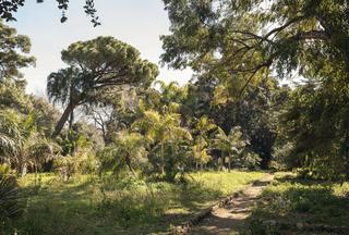 Studio Visit Italia per Manifesta12 Palermo, Orto Botanico di Palermo. Foto di Delfino Sisto Legnani, 2017. Courtesy OMA.