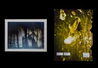 Nico Vascellari, Cuckoo, Cuckoo, 2006 - 2007 fotografia in bianco e nero e pagina di rivista strappata applicata su cartone, esemplare unico 39 x 54 cm