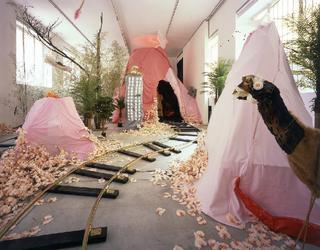 Anna Galtarossa, Kamchatka, Kamchatka, 2005, materiali vari, dimensioni ambientali. Veduta dell'allestimento. Foto di Agostino Osio.