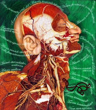 Thin Line, Valerio Carruba, E so certo tre cose, olio su acciaio inox, 56 x 66 cm. 2004.
