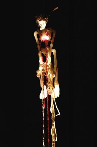 Anna Galtarossa, Kamchatka, Skelet.